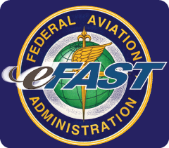 Image result for eFAST (Federal Aviation Administration) logo